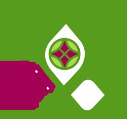 QNV2030-logo